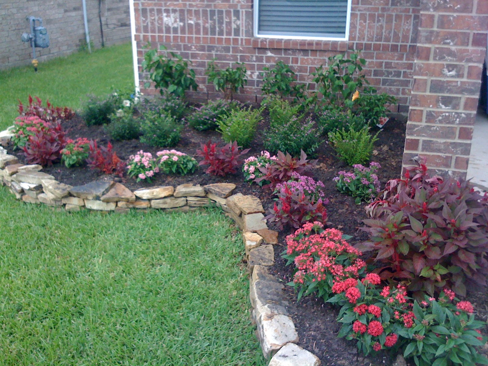 Flower beds terranova landscapes for Best plants for front flower bed
